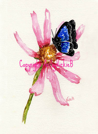 Pink Cone Flower with Blue Butterfly